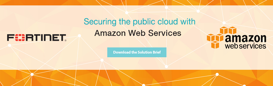 Securing the public cloud with
